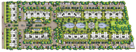 Trinity Cove site plan